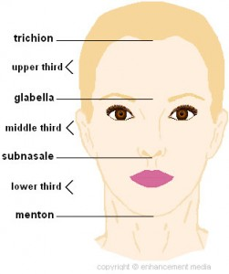 face assessment_4